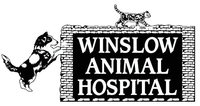 Winlsow Animal Hospital