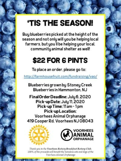 Blueberry Sale! @ Online orders to be picked up Voorhees Animal Orphanage | Westerville | Ohio | United States