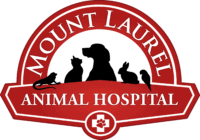 Mt, Laurel Animal Hospital