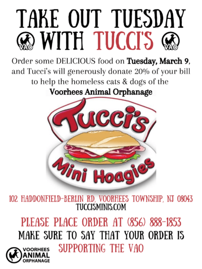 Take Out Tuesday with Tucci's @ Tucci's Mini Hoagies | Voorhees Township | New Jersey | United States