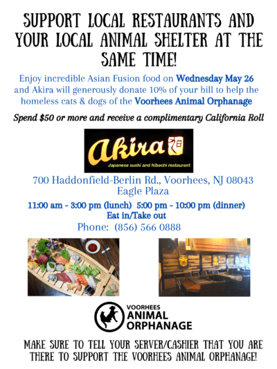 Dine-in or Take-out with Akira (Voorhees) @ Akira Japanese Sushi & Hibachi Restaurant | Voorhees Township | New Jersey | United States